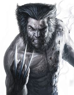 Wolverine by John Barry Ballaran