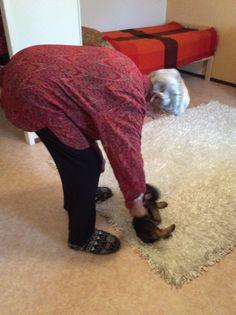 Pikkuinen liikunnanohjaaja saa selän taipumaan