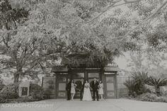 Japanese Friendship Garden Wedding Photography 858-699-5376 www.AlonDavidPhotography.com