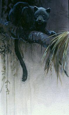 """""""Black Jaguar"""" by Robert Bateman Wildlife Paintings, Wildlife Art, Animal Paintings, Big Cats Art, Cat Art, Black Panthers, Black Jaguar, Spirit Animal, Drawings"""