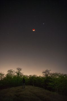 The night sky and a lunar eclipse!