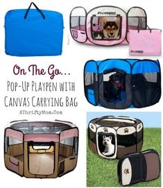 Dog gift idea, easy ways to travel with pets, Pop-Up Playpen with Canvas Carrying Bag Litter Box Smell, Cat Pee Smell, Pet Travel, Playpen, China, Recipe For Mom, Diy Stuffed Animals, Dog Care, Dog Design