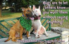 #Bullies