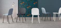 Napi: sedie in scocca grigio antracite, azzurro artico o bianca - gambe frassino massello spazzolato grigio o metallo verniciato bianco