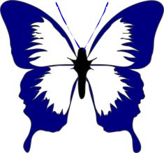 Free Butterfly Clipart of Butterfly clip art butterfly images image for your personal projects, presentations or web designs. White Butterfly Tattoo, Butterfly Outline, Butterfly Stencil, Butterfly Tattoos For Women, Butterfly Clip Art, Butterfly Drawing, Butterfly Images, Butterfly Template, Pink Butterfly