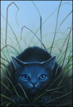 Bluestar is the best leader beside Firestar and is one of my favorite characters