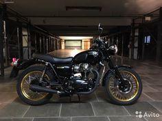 Kawasaki w800— фотография №2