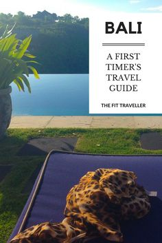 A First Timer's Travel Guide to Bali, Indonesia  Planning a trip to Bali? Here is everything you need to know to plan your trip and get settled into the island like a local. ********** Best in Bali   Bali Travel Guide   First Timer's Guide to Bali   Where to Stay in Bali   What to do in Bali   Is Bali Safe   Safety in Bali   Bali Visas   Bali, Indonesia   Things to do in Bali   Things to do in Indonesia  