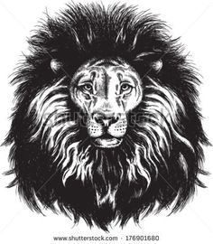 stock-vector-black-and-white-vector-sketch-of-a-majestic-lion-s-face-176901680.jpg (410×470)