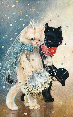 DIY Diamond Painting Bride and Groom Cats Drawing - craft kit – TurquoiseRoads I Love Cats, Crazy Cats, Cute Cats, Cat Wedding, Wedding Vintage, Image Chat, Photo D Art, Cat Cards, Here Kitty Kitty