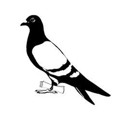Carrier Pigeon | Illustration