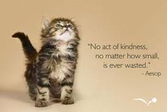 Kindness costs nothing, no reason to ever be cruel