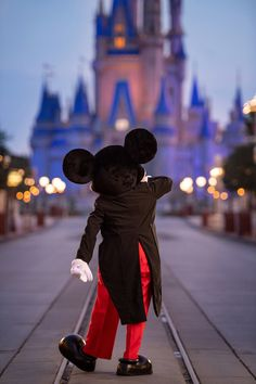 Disney World Resorts, Walt Disney World, Disney Land, Magic Kingdom, Disney Magic, Seaworld Orlando, Universal Orlando, Disneyland Resort, Orlando Florida