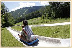 Alpine slide at Stowe Vermont