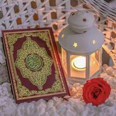 Holy Qur'an ❤
