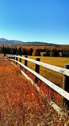Whitefish, Montana in the fall
