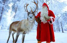 Santa Claus Reindeer Joulupukin pajakylässä Rovaniemellä