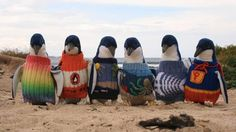 Australia's oldest man has spent a lot of his days knitting sweaters for penguins.