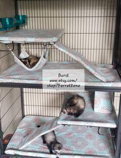 Ferret Nation - Critter Nation - Cage Liners Ferret Playpen, Ferret Toys, Pet Ferret, Pet Rats, Ferrets Care, Baby Ferrets, Funny Ferrets, Chinchillas, Rats