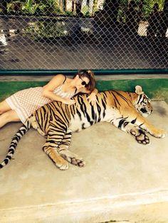 Tiger Kingdom, Phuket, Thailand. Most amazing experience!!