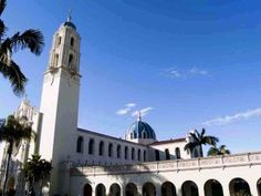 University of San Diego is my dream college because I could study there to become a pediatrician