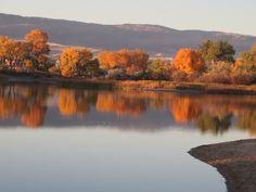 Eastside dog park, Casper, Wyoming; love the fall reflections!