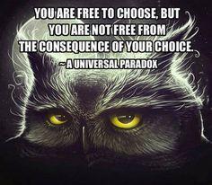 Universal Paradox…