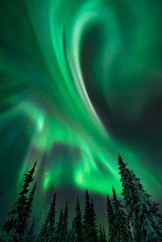 Aurora Borealis, Finland. By David Claperazzi.