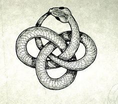 Kundalini, otherwise known as the Ouroboros #animal