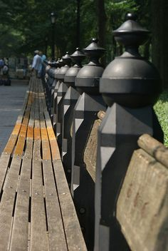 Park bench in Central Park NYC