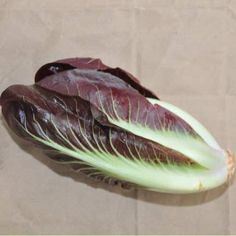Baker Creek Heirloom Seeds - Radicchio Rossa di Treviso