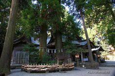 高千穂神社 夫婦杉・拝殿等