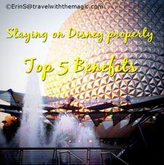 clays, books, disney properti, disney resorts, benefit, disney travel, passport disney, disney world resorts, travel quotes