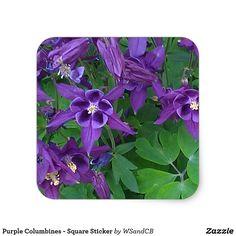Purple Columbines - Square Sticker
