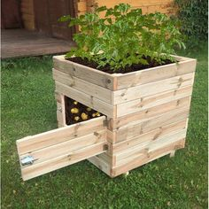 Kostuch Square Potato Planter Box. The solid wooden structure can hold ample amounts of soil, and still being compact enough to fit in any garden space to make it easy for you to harvest potatoes and other root crops, such as carrots, beets and parsnips. Add doors on each side for better access. #containergardeningvegetables #vegetablegardening
