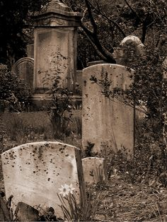 I love cemeteries, the older the better. When my husband and I first started dating.we used to find an old cemetery, and have a picnic there. Sometimes we'd also take rubbings of the grave stones. Cemetery Statues, Cemetery Headstones, Old Cemeteries, Cemetery Art, Graveyards, Angel Statues, Cemetery Angels, Gardens Of Stone, After Life