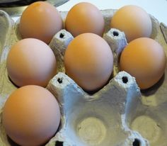 Crush a few egg shells in each of your holes to help prevent blossom rot