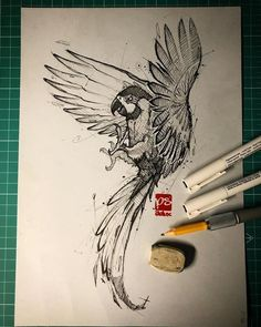 Fineliner Ink and Pencil Animal Drawings. Click the image, for more art by psdelux zeichnen Ink and Pencil Animal Drawings. Pencil Drawings Of Animals, Animal Sketches, Drawing Sketches, Art Drawings, Sketchbook Drawings, Fashion Sketchbook, Parrot Drawing, Parrot Painting, Parrot Quotes
