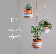 Si tenemos poco hueco en casa o queremos alegrar algún rincón podemos poner plantas colgantes, sigue el paso a paso para hacerlo tu mismo.