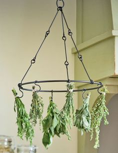 herb drying rack... Could be done with an old bicycle rim too! reclaimed-to-fame