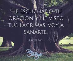 2 Reyes 20:5