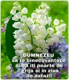 Good Morning Greetings, God Loves Me, Spiritual Quotes, Verses, Prayers, Blessed, Spirituality, Bible, Plants
