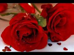 Get Into the Valentine's Day Mood with 15 Romantic Wallpapers: Dozen Roses by Desktop Nexus Maria Ortega, Romantic Love Messages, Dozen Roses, Day And Mood, Flowers Today, Rose Wallpaper, Free Hd Wallpapers, Peace And Love, Red Roses