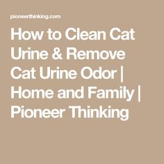 The 25 Best Pet Urine Remover Ideas On Pinterest Urine
