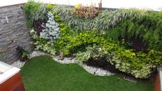 How to create the perfect vertical garden