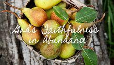 God's Faithfulness in Abundance - LifeWay Women Tasty Dishes, Christian Quotes, Abundance, Art Quotes, Faith, God, Times, Inspiration, Instagram