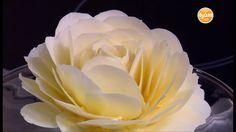 وردة من الشيكولاتة البيضاء  | سالي فؤاد
