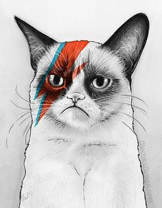 Grumpy Bowie Cat Giclee Fine Art Print, Geek Home Decor, Grumpy Cat