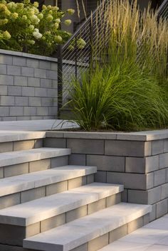On the lookout for stylish, well-designed stone steps? Try our rustic and traditional Venetian smooth textured steps and add charm to your landscape design. Landscaping Retaining Walls, Concrete Front Steps, Concrete Steps, Outdoor Stairs, Staircase Outdoor, Patio Stairs, Patio Tiles, Front House Landscaping, Garden Stairs