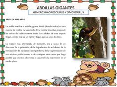 Proyecto ardillas explicación Comics, Animals, Frases, Rodents, Squirrels, Blue Prints, Animales, Animaux, Comic Book